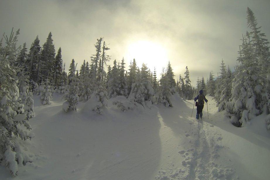 Le sentier qui mène du refuge La Paruline à celui du Pluvier fait près de 15 km... dans la neige. (Photo Hugo-Sébastien Aubert, La Presse)