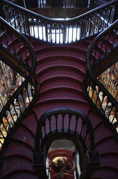 La librairie Lello & Irmao, considérée par plusieurs comme la plus belle au monde. (Photo Stéphanie Morin, La Presse)