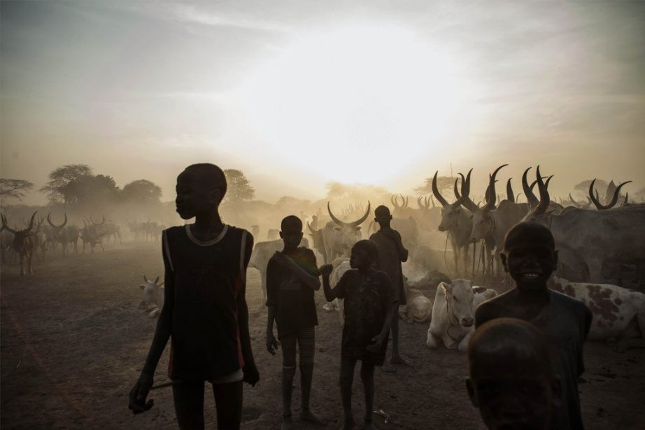 Selon les estimations de l'Organisation mondiale de la... (PHOTO FABIO BUCCIARELLI, AFP)