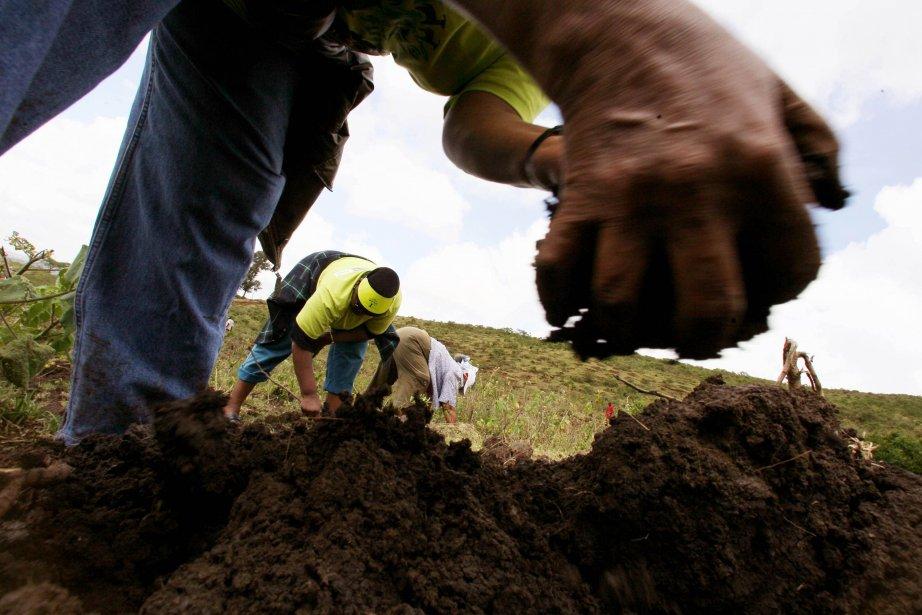 Manipuler artificiellement le climat pour lutter contre le... (Photo AFP)