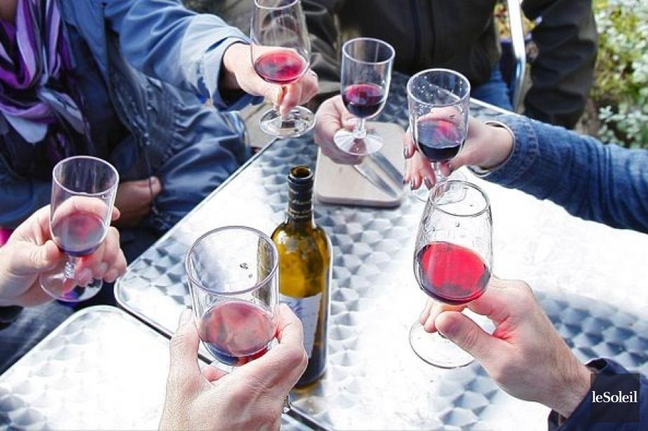 L'absence de tout produit viticole de la Belle... (Photo d'archives Le Soleil, Yan Doublet)