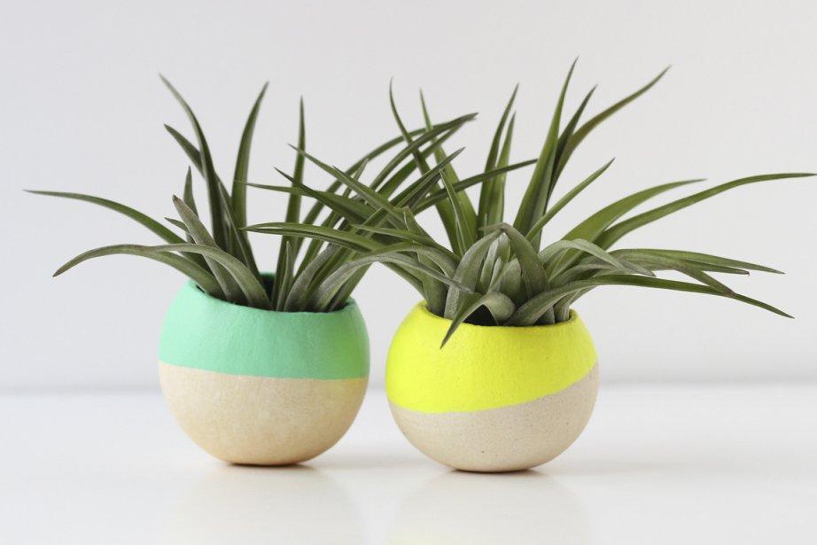 Pots pour «air plant» faits en Californie par... (Photo fournie par À la mode Montréal)