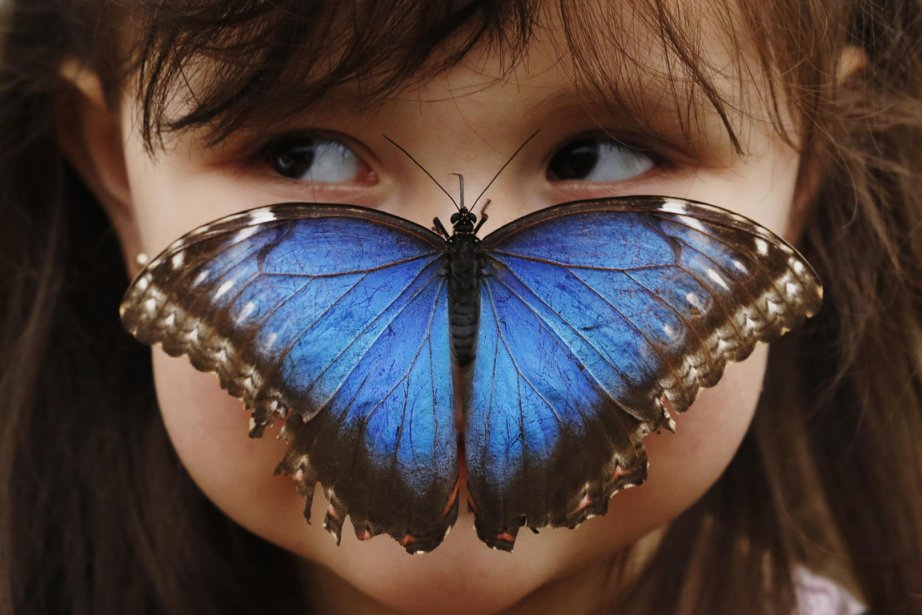 L'odorat humain est capable de différencier au moins 1000... (Photo archives AFP)