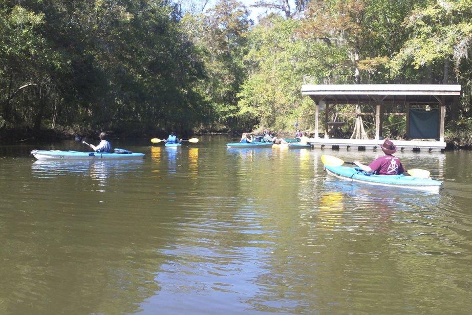 Le kayak est le meilleur moyen de visiter le delta. Silencieux, il permet de s'approcher des animaux. (PHOTO FOURNIE PAR 5 RIVERS DELTA RESOURCE CENTER)