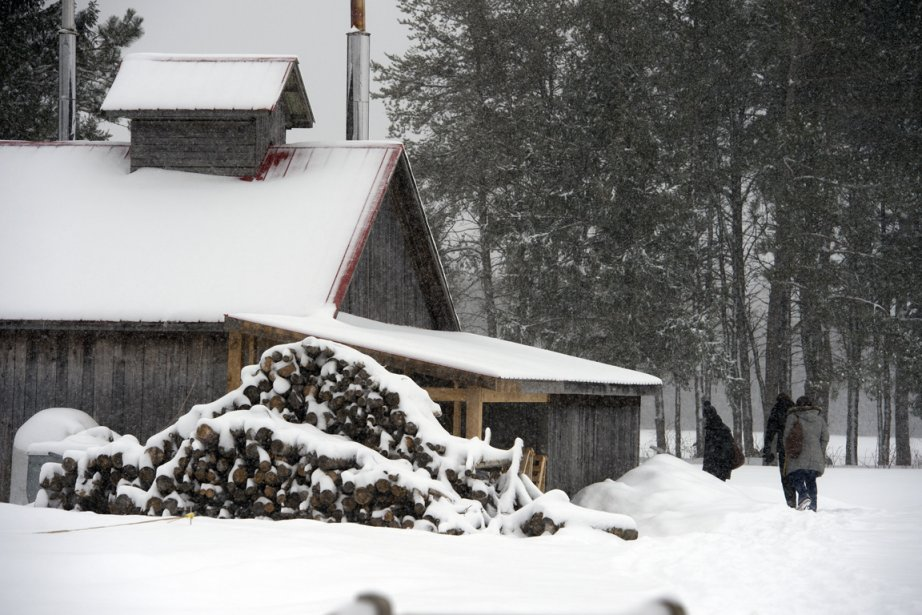 La cabane de la ferme du Crépuscule a des projets d'agrandissement. (Photo Stéphane Lessard, Le Nouvelliste)