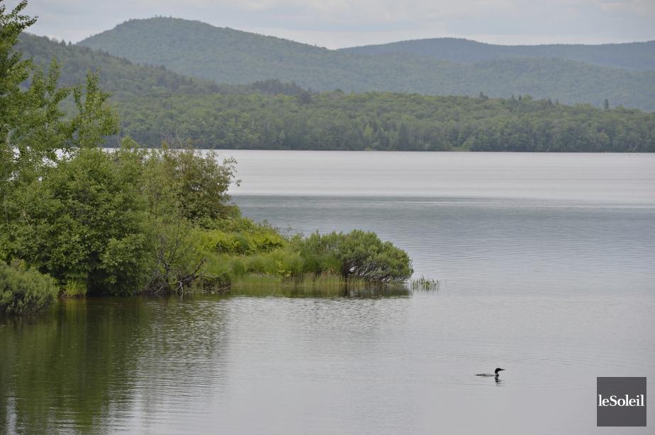 Le plan de la Ville de Québec pour le lac Saint-Charles reporté à 2015 - LaPresse.ca