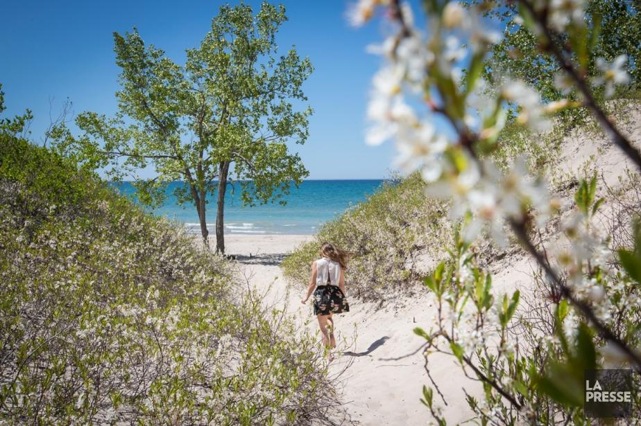 Une plage de sable blanc dans la région...