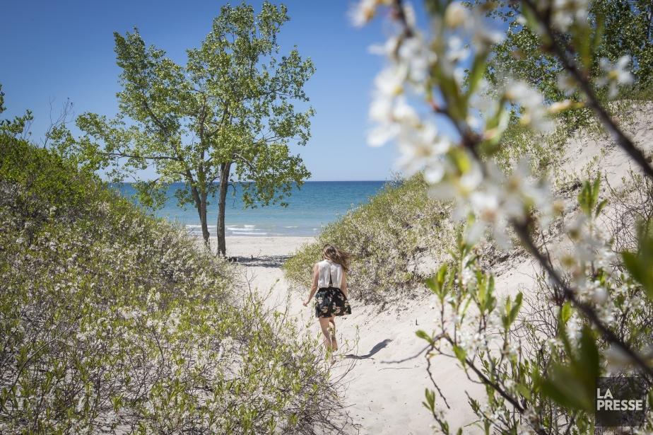 Une plage de sable blanc dans la région dePrince Edward County. (PHOTO OLIVIER PONTBRIAND, LA PRESSE)