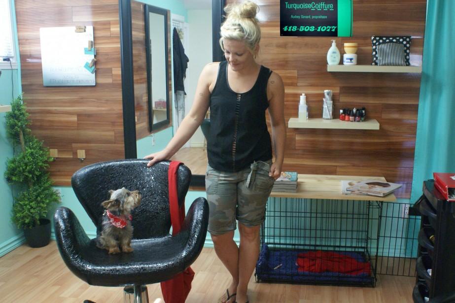 L 39 original assistant du salon turquoise coiffure m lissa for Salon de coiffure original