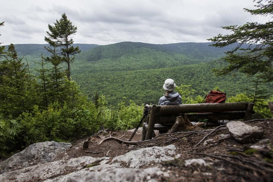 La plus belle vue depuis le sommet du mont Chocolat. (Photo Olivier Pontbriand, La Presse)
