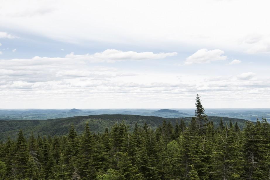 Le regard porte sur des dizaines de kilomètres à la ronde, depuis le sommet du mont Magloire. (Photo Olivier Pontbriand, La Presse)