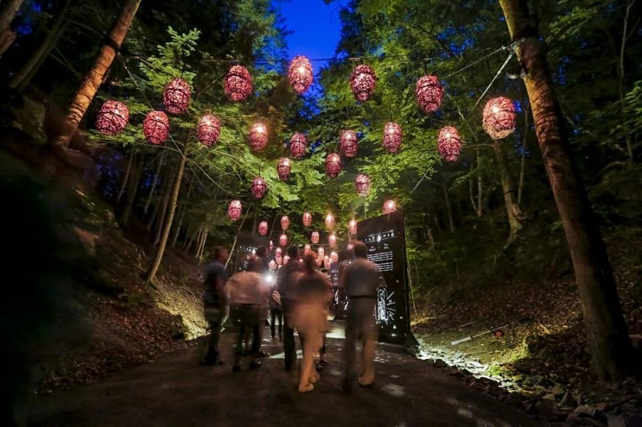 Le parcours de <em>Foresta Lumina</em> nous charme dans le premier sens du mot: les arbres et les rochers se transforment en étranges créatures mouvantes, comme dans les films <em>Pocahontas</em> ou <em>Le magicien d'Oz</em>! (Photo: Jocelyn Riendeau, La Tribune)