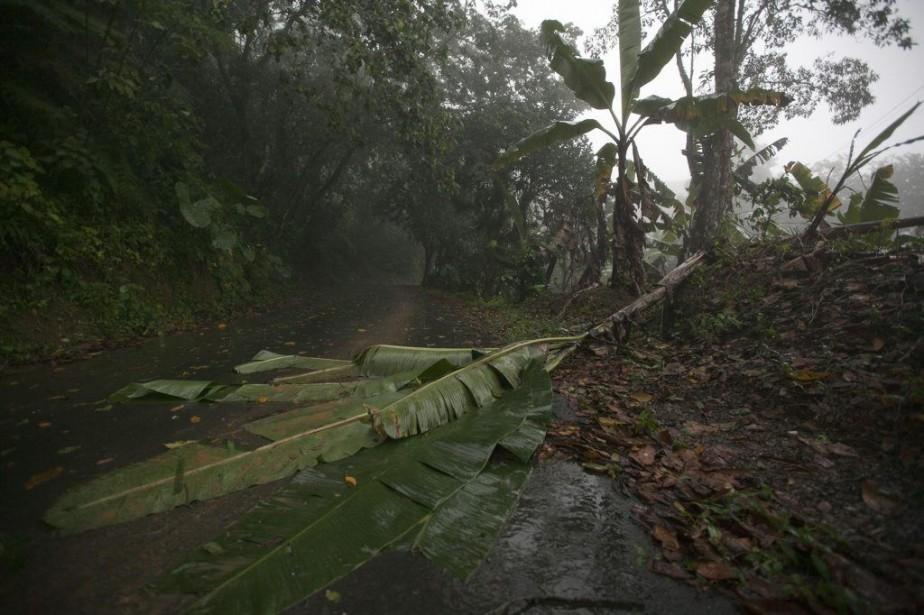 Bertha est passée au sud-ouest de Porto Rico... (Photo ANA MARTINEZ, Reuters)