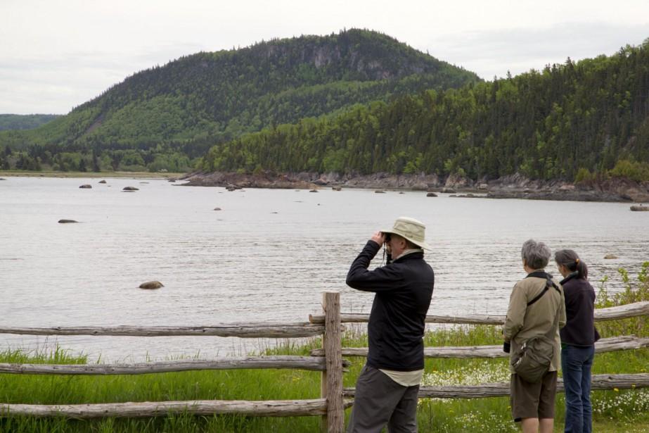 Les jumelles sont de mise pour observer les nombreux oiseaux qui nichent dans le secteur. (Photo Alain Roberge, La Presse)