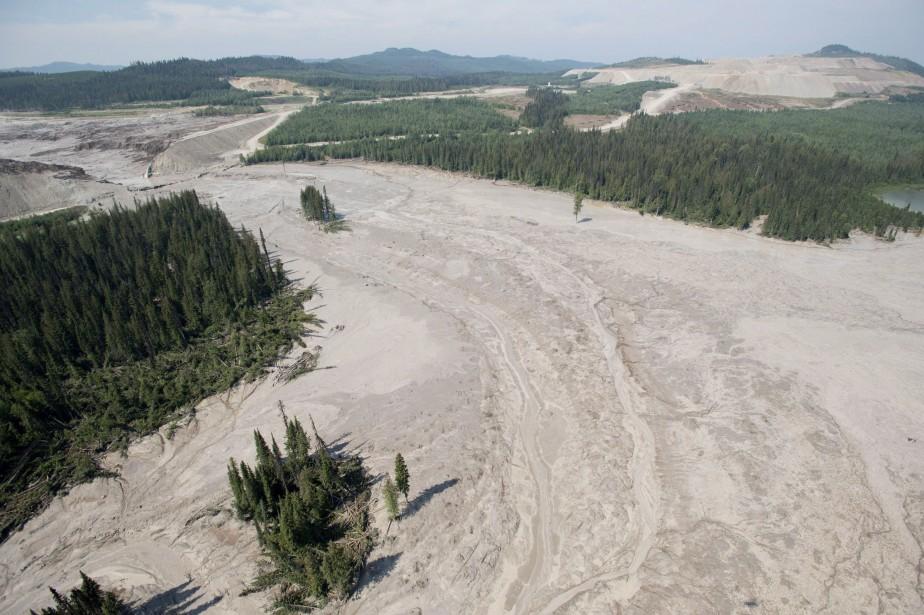 Des millions de mètres cubes d'eaux usées et... (Photo Jonathan Hayward, La Presse Canadienne)