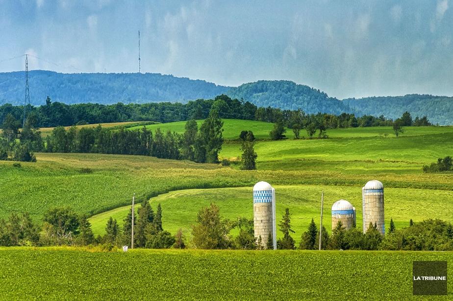 Trouver la rel ve agricole en un clic christine bureau for Bureau pro drummondville