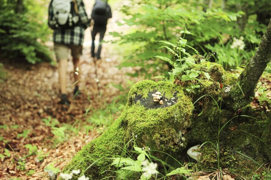 Le taux de succès d'une randonnée est souvent... (Photo Digital/Thinkstock)