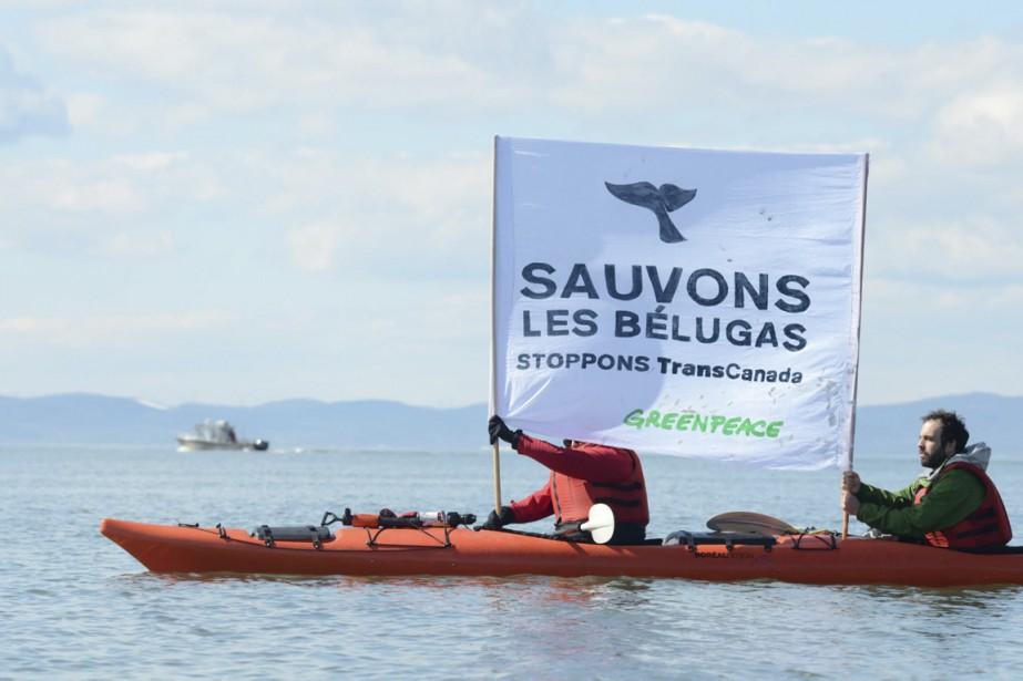 Des activistes de Greenpeace à Cacouna, pour dénoncer... (Photo fournie par Greenpeace)