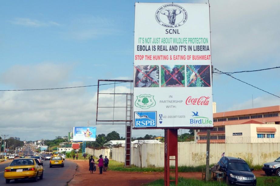 Un panneau publicitaire met en garde la population... (PHOTO ZOOM DOSSO, ARCHIVES AFP)