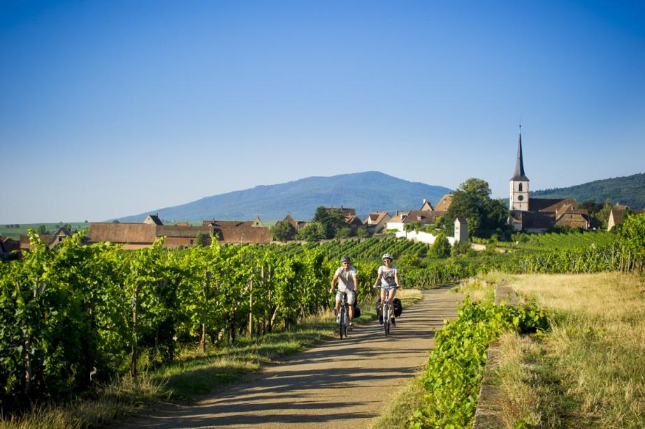 Vins, choucroute, tartes flambées, l'Alsace compte plus d'une délicieuse...