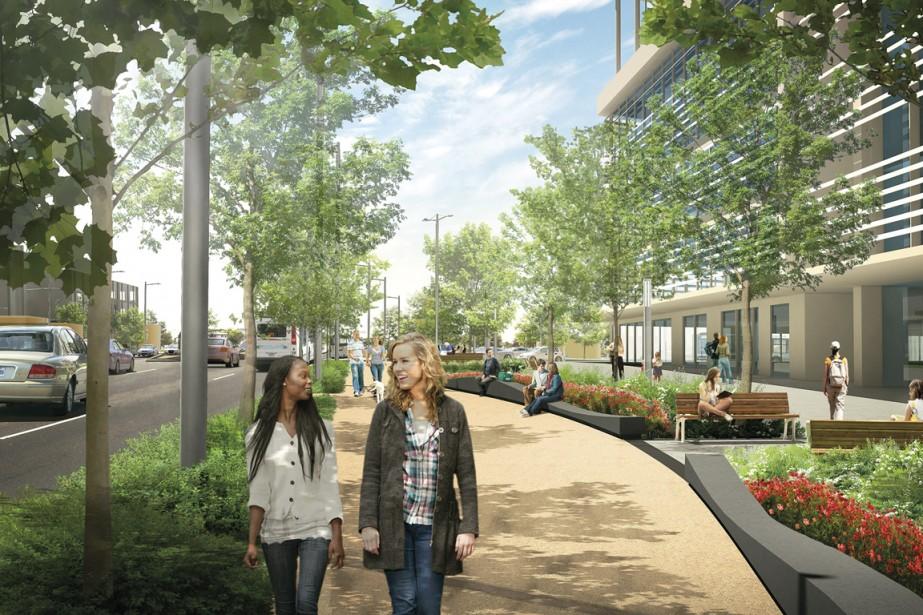 Montréal-Nord rendra le boulevard Pie-IX plus agréable à parcourir à pied et en vélo en le verdissant et en aménageant de plus en plus larges trottoirs. (Illustration fournie par l'arrondissement de Montréal-Nord)