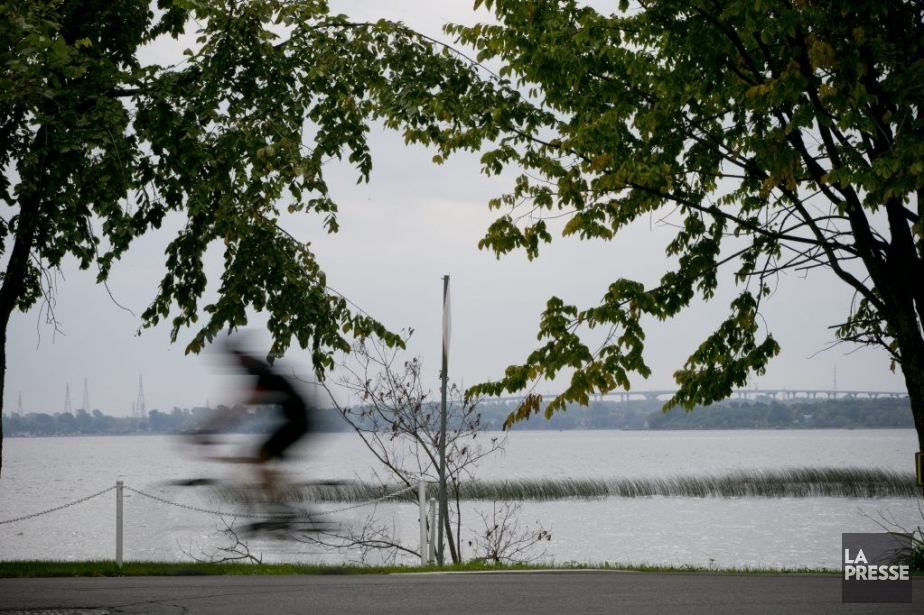 Un cycliste roule sur le boulevard Perrot, à...