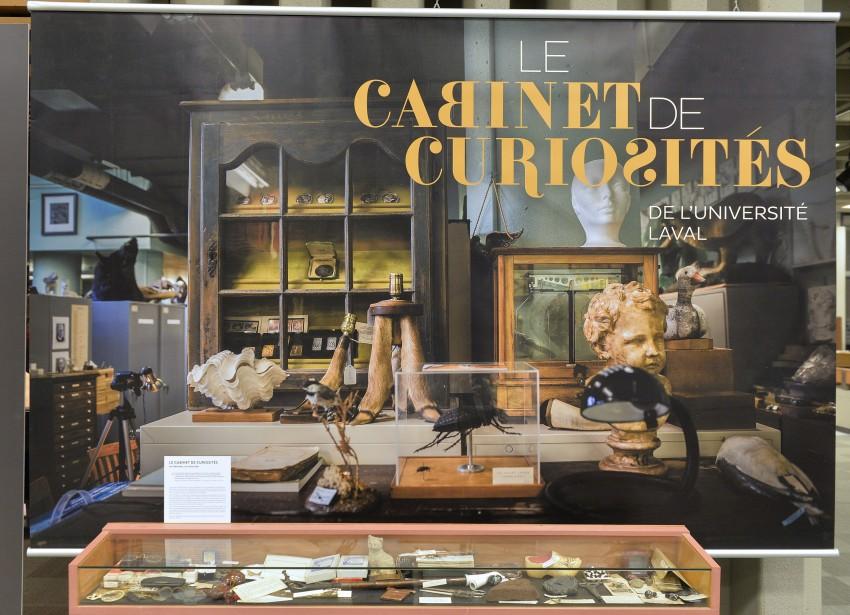 Le thème du cabinet de curiosités pour cette nouvelle exposition s'est imposé de lui-même. Les réserves de l'Université Laval, situées en grande partie dans le pavillon Louis-Jacques-Casault, sont une vraie caverne d'Ali Baba. (Le Soleil, Pascal Ratthé)