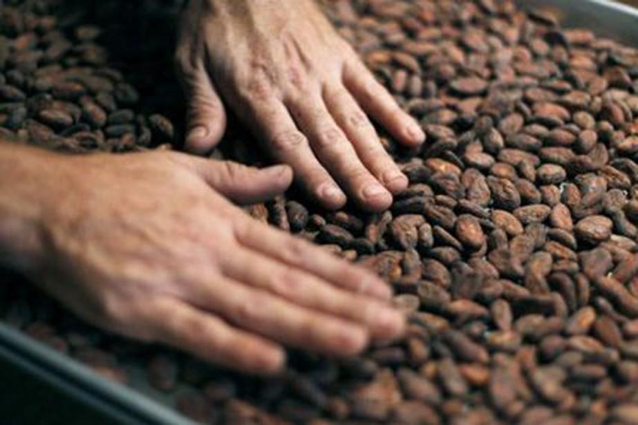 Les cours du cacao ont évolué en dents... (Photo archives Reuters)