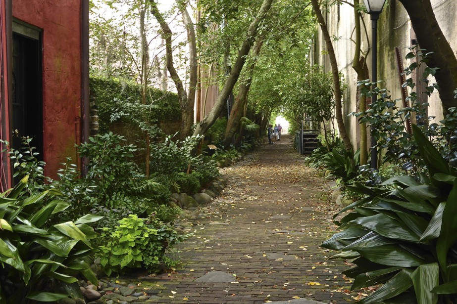 Ici et là, des ruelles se faufilent entre deux rangées de maisons comme des tunnels de verdure. (Photo Fabienne Couturier, La Presse)