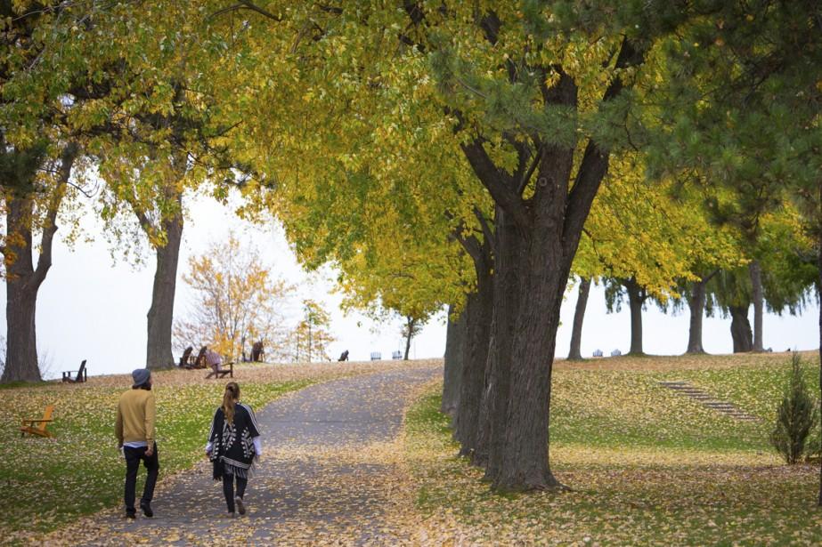 L'île se prête bien à une balade d'automne en pleine nature. (Photo Simon Giroux, La Presse)
