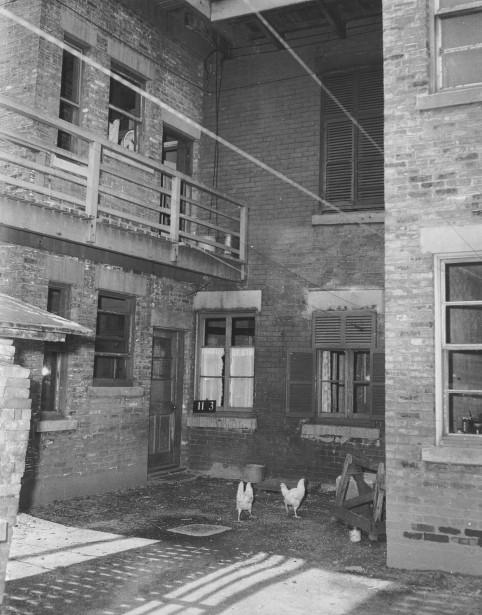 Le Red Light comportait une grande concentration de bâtiments vétustes. Plus du tiers des logements n'avait pas de baignoire. Les bâtiments rasés ont fait place à la fin des années 50 à un complexe de logements sociaux répondant aux normes les plus modernes à l'époque: les Habitations Jeanne-Mance. (PHOTO ARCHIVES VILLE DE MONTRÉAL, TIRÉE DU LIVRE QUARTIERS DISPARUS)