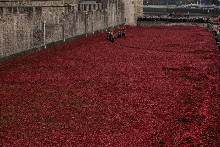 L'oeuvre de Paul Cimmins, composées de milliers de coquelicots. (PHOTO MATT DUNHAM, ASSOCIATED PRESS)