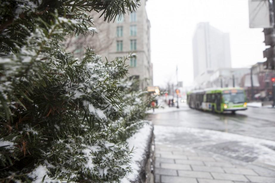 Première neige sur Québec. (Le Soleil, Caroline Grégoire)