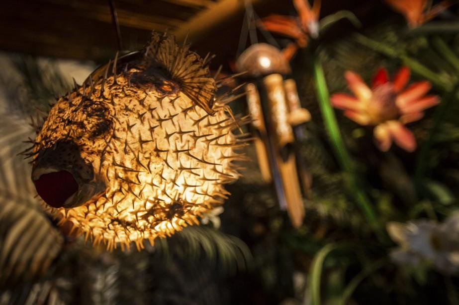 Une lampe marine et marrante: un poisson Diodon transformé en lampe. (Photo Olivier Pontbriand, La Presse)