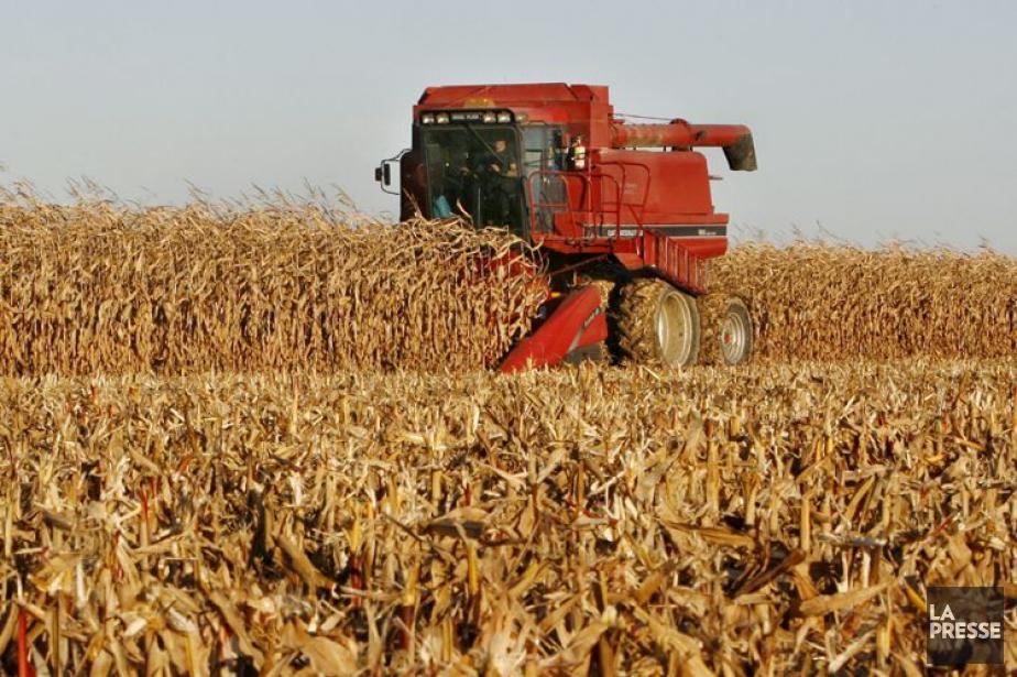 L'agriculture est plus importante... (PHOTO ROBERT SKINNER, ARCHIVES LA PRESSE)