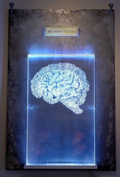 <em>De Consciencia</em> (2013), gravure sur plexiglas, acier, DEL (Le Soleil, Erick Labbé)