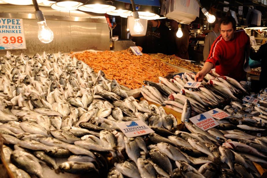 Un poissonnier installe ses poissons en vente au marché public d'Athènes. (Photo Bernard Brault, archives La Presse)