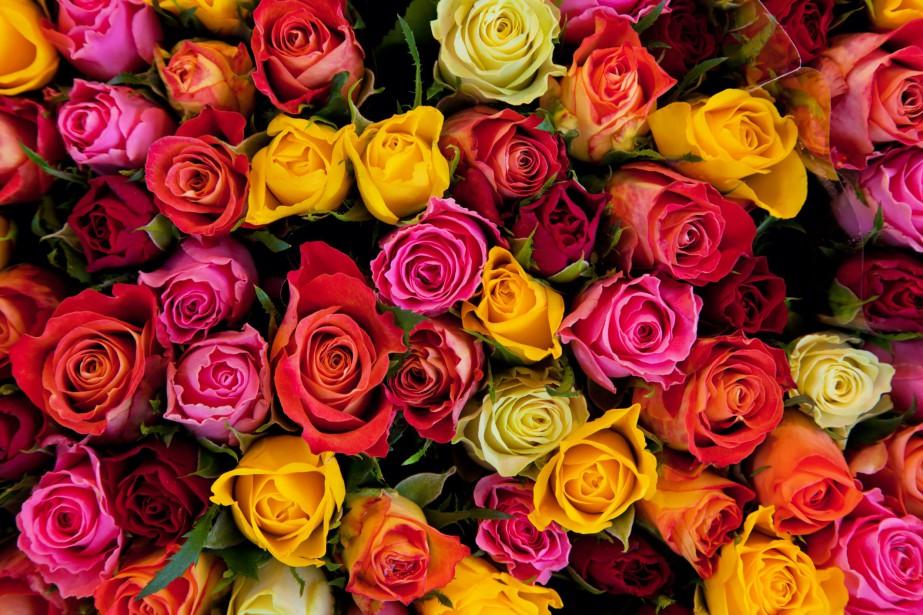La Saint-Valentin, le 14 février, sonne le vrai... (Photo Digital/Thinkstock)