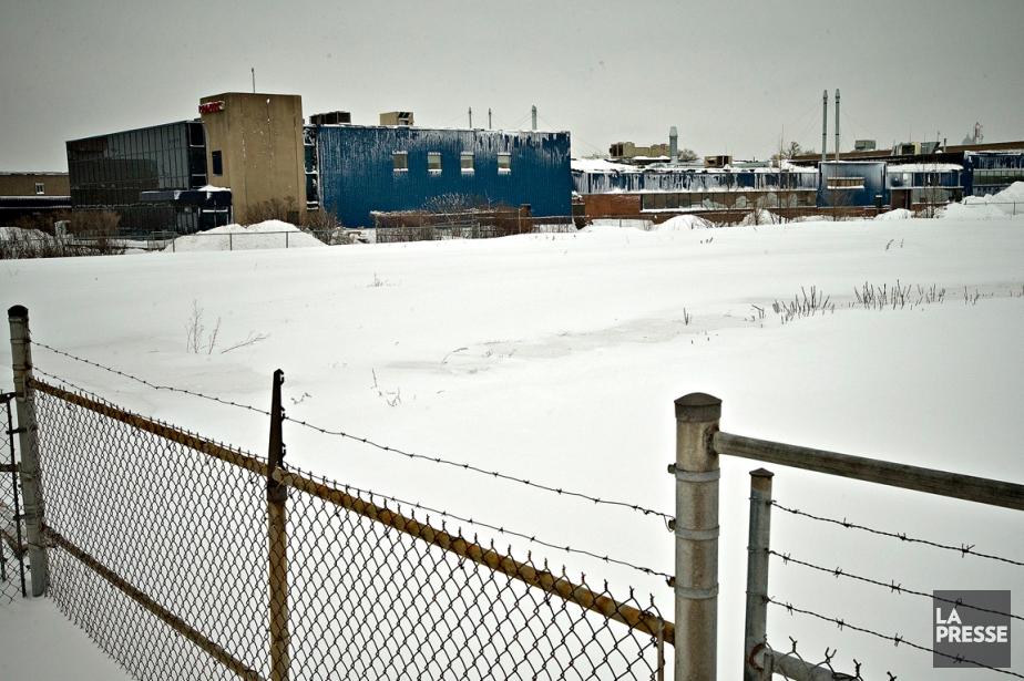 «Montréal ne peut pas se permettre en ce... (PHOTO PATRICK SANFAÇON, LA PRESSE)
