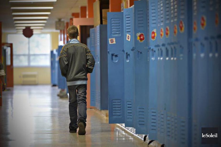 Un élève sur cinq - voire près de... (PHOTO PASCAL RATTHÉ, ARCHIVES LE SOLEIL)