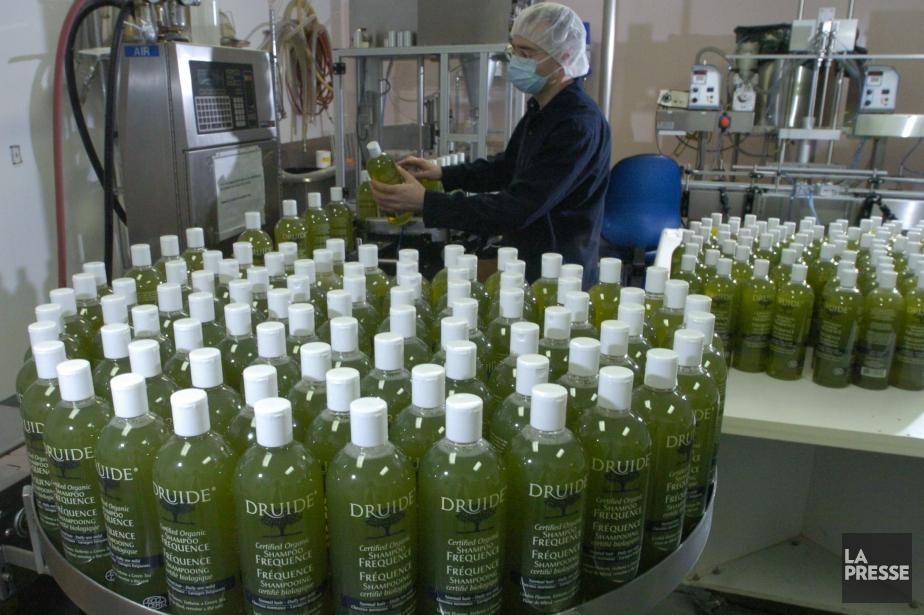 DRUIDE est la seule entreprise du pays à... (PHOTO ARCHIVES LA PRESSE)
