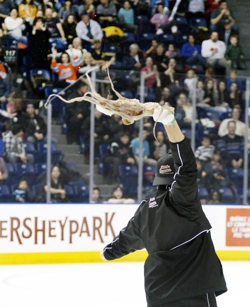 Un poulpe en clin d'oeil aux joueurs de Détroit! (Photo Le Soleil, Jean-Marie Villeneuve)