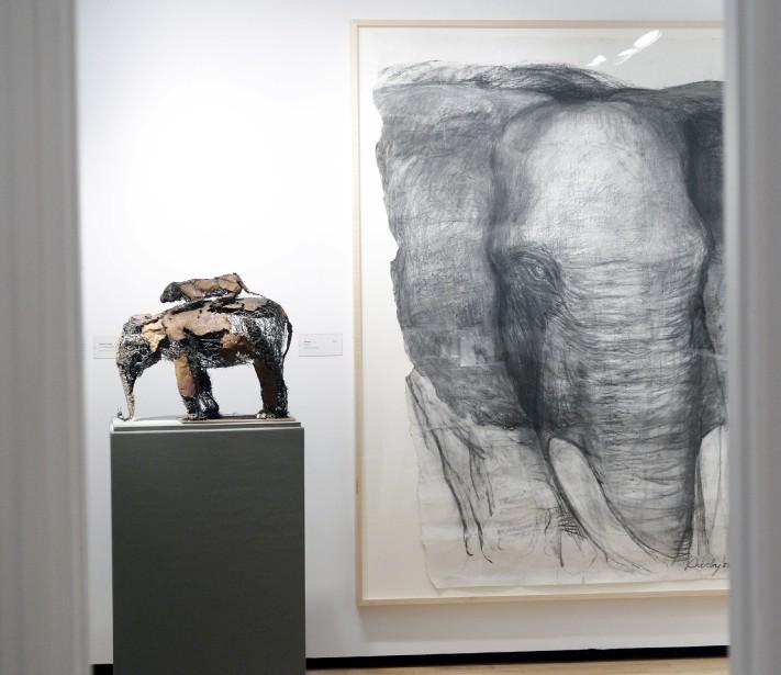 À droite,<em>Éléphant</em>, 2006, fusain, collection Marc Bellemare et à gauche, <em>Éléphant et Tigre</em>, 2014, fil d'acier soudé, Galerie Lacerte. (Le Soleil, Jean-Marie Villeneuve)