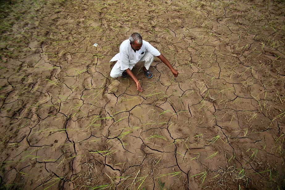 Un Indien s'occupe de son champ desséché.... (Photo archives AFP)
