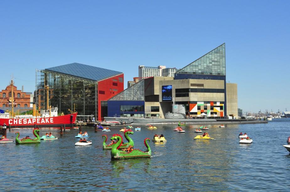Le National Aquarium de Baltimore (PHOTO TIRÉE DE WIKIPÉDIA)