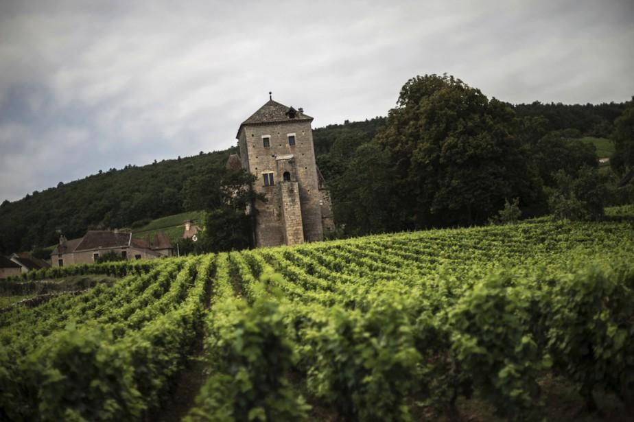 Bordeaux et l'arc méditerranéen concentrent 90% des investissements... (PHOTO JEFF PACHOUD, ARCHIVES AFP)