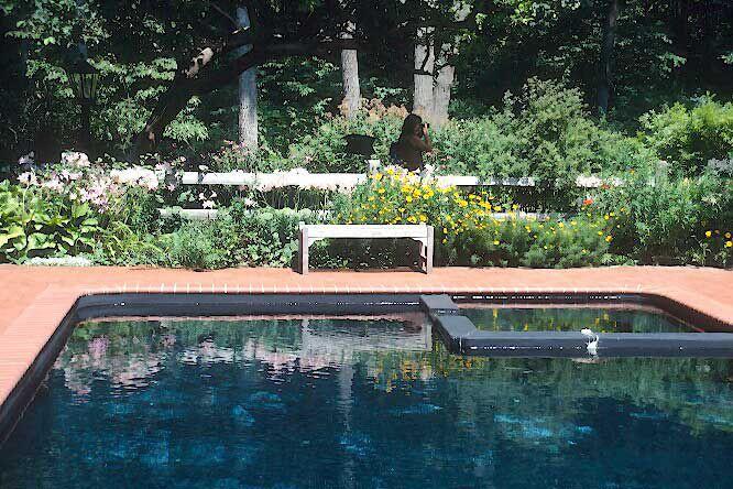 Que planter pr s d 39 une piscine larry hodgson horticulture - Camping creuse avec piscine ...