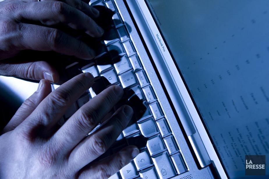 Faire des recherches en ligne sur des... (PHOTO DAVID BOILY, ARCHIVES LA PRESSE)