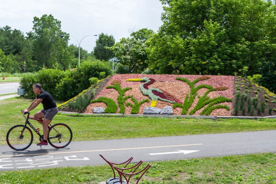 Sur la piste cyclable, près du boulevard des Récollets: clin d'oeil aux hérons qui vivent aux abords du lac Saint-Pierre. (Photo: Olivier Croteau, Le Nouvelliste)