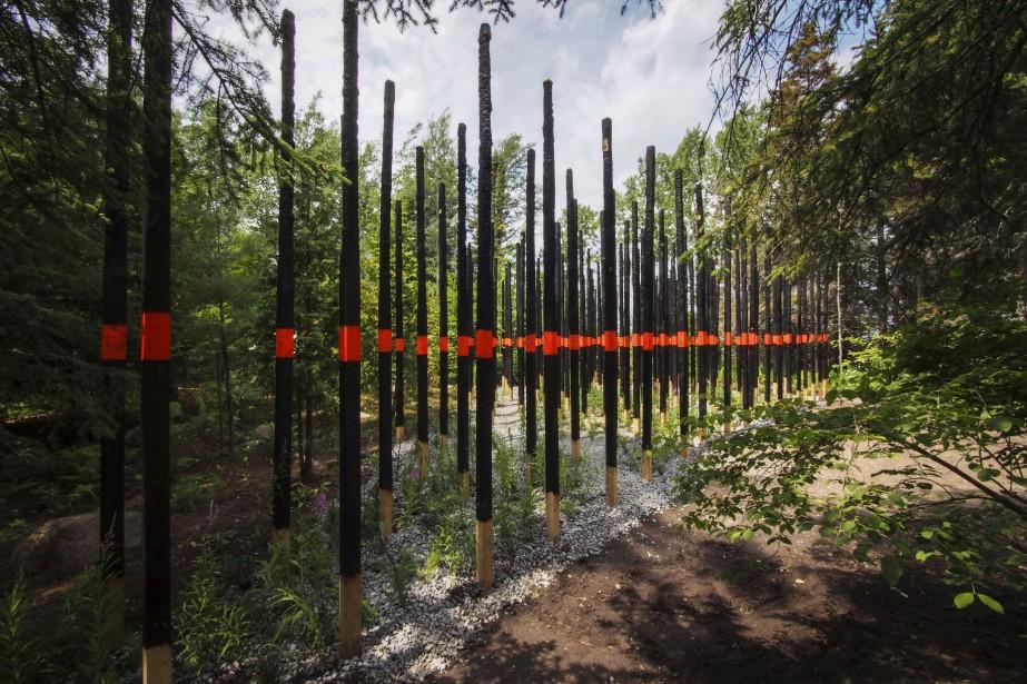 <em>Afterburn</em> (2014), Civilian Projects, États-Unis -Avec les marques de peinture et les sections des poteaux non calcinés, les concepteurs cherchent à révéler les traces de destruction et le potentiel de régénération de l'écologie du feu avec la richesse organique de la forêt brûlée. (Photo Louise Tanguay)